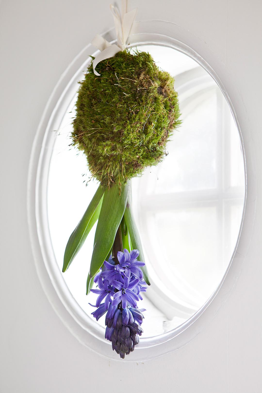 Hyacint-upp-och-ned2©Anna-Lefvert