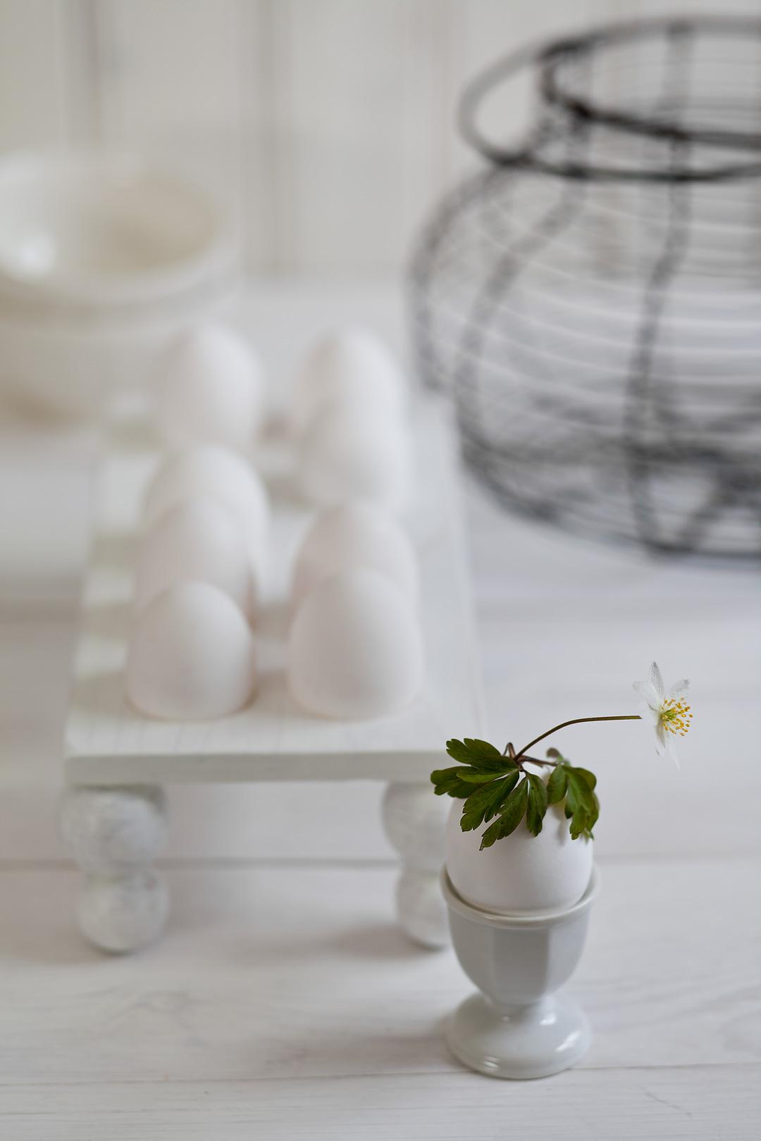 eggvase1©Anna-Lefvert