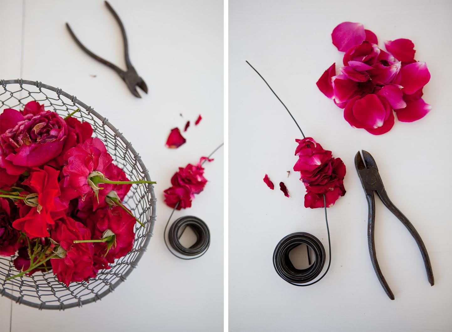Rosepetals4©Anna-Lefvert