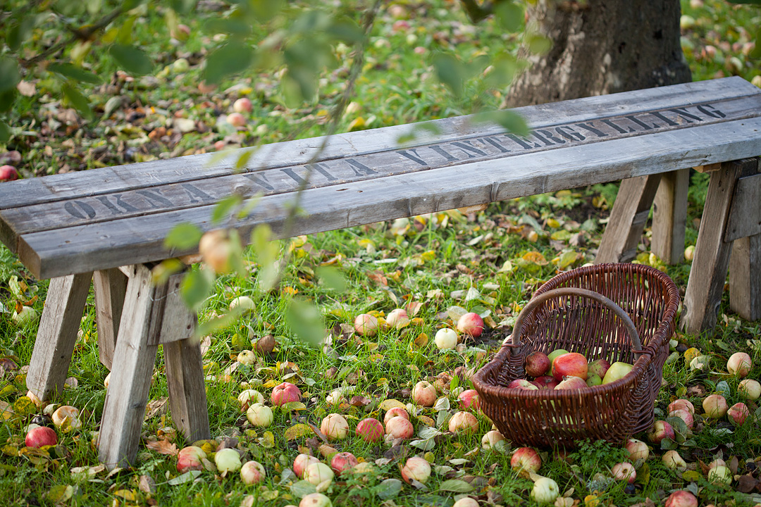 Applebench2©Anna-Lefvert