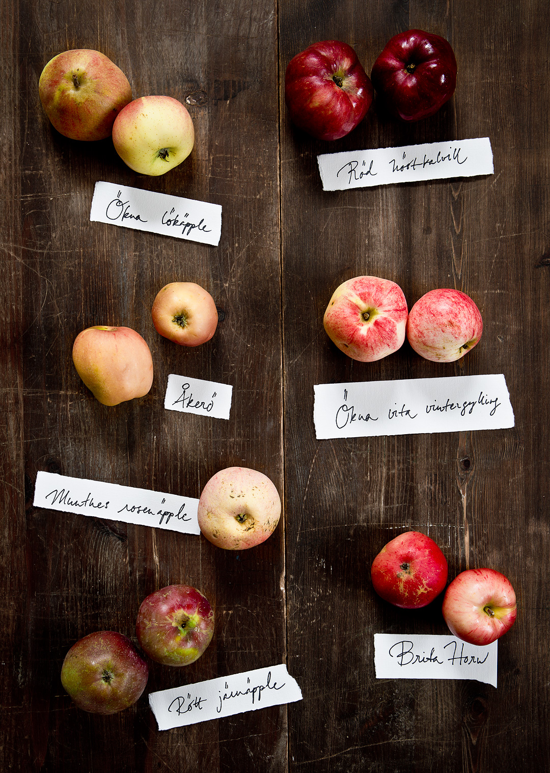 Apples©Anna-Lefvert