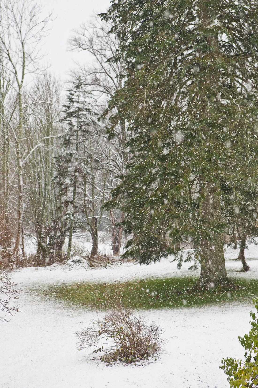 Snow7©Anna-Lefvert