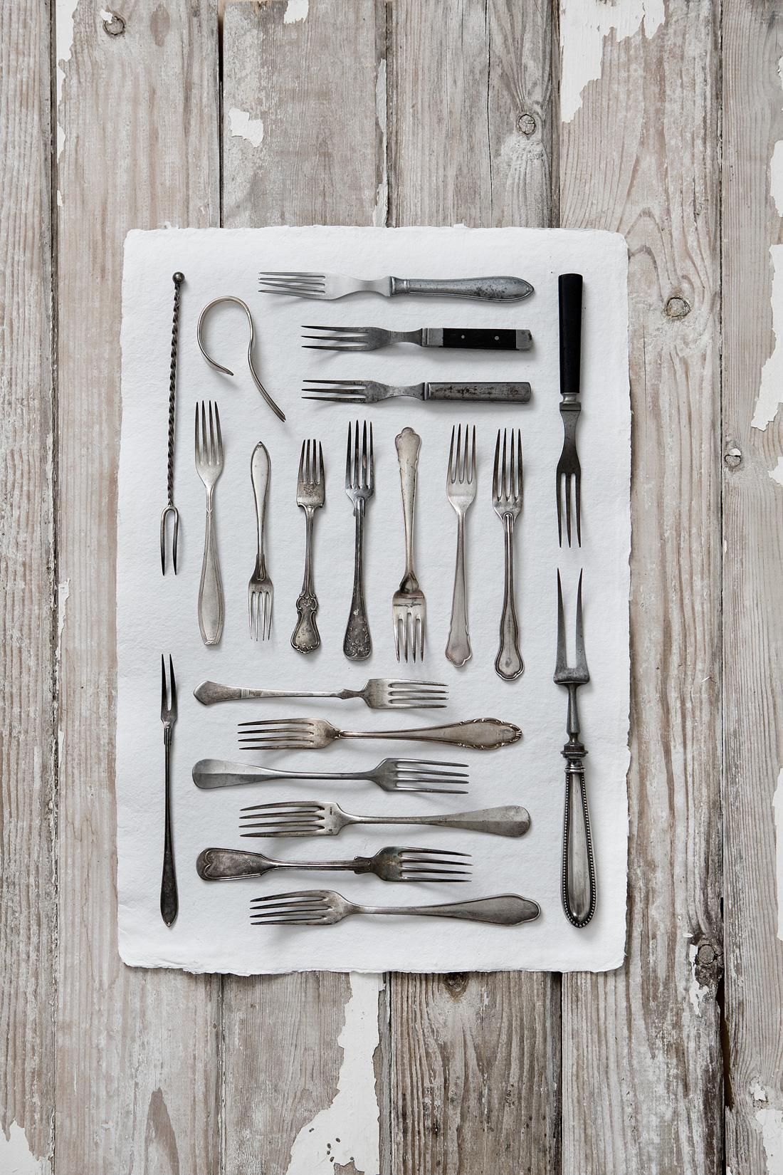 Fork©Anna-Lefvert